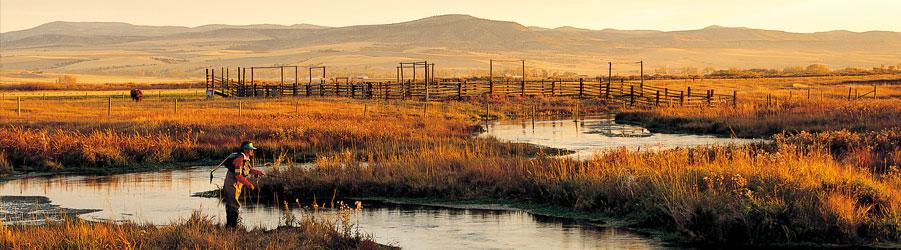 Red Rocks Montana